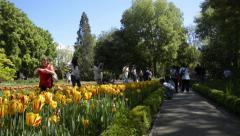 Royal Botanical Gardens - Madrid, Spain 1 Stock Footage