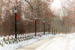 Old style street lamps christmas Stock Photos