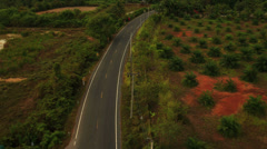 Aerial View: Flight over local road topical village, Krabi, Southern Thailand Stock Footage