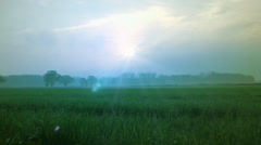 Misty morning sunrise - rural countryside natural backgrounds Stock Footage