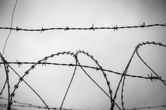 barb wire shoot against a gray sad sky - stock photo