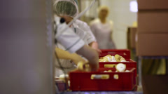 Workers at the food factory Stock Footage
