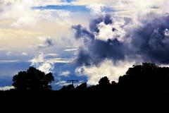 dramatic sky with a black silhouette of trees in front - stock photo