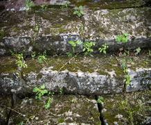 Old stone stair treads Stock Photos