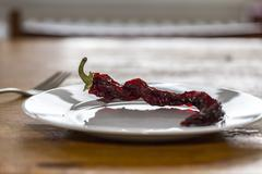 Sparse meal still life with chili on a plate Stock Photos
