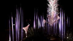 Chihuly in the Garden Exhibition at night. Desert Botanical Garden. Stock Footage