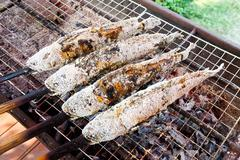 grilled snakehead fish coated with sea salt - stock photo