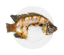 nile tilapia fishbone - stock photo