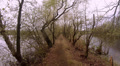 Small path between ponds in Nature Reserve Viehmoor Footage