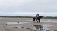 Horses Walking On Beach Stock Footage