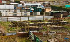 Allotment plots in rows Stock Photos