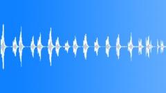 Parrot - sound effect