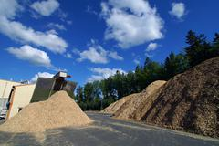 storage of wooden fuel against blue sky - stock photo