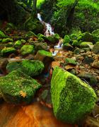 Stock Photo of Cascades in rapid stream of mineral water. Red ferric sediments on big boulders.