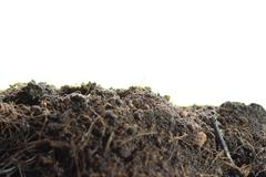 Pile heap of soil humus Stock Photos