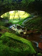 Bellow old stony bridge over rapid stream, big boulders and fresh green fern - stock photo