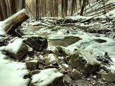 Stock Photo of Stream in deep freeze, dark winter forest. Long exposure in night.
