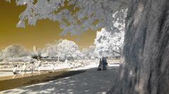 Princess Diana Memorial Park, London. Stock Footage
