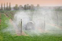 Agriculture, spraying of trees in orchard Stock Photos