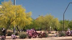 Types of Phoenix city. Arizona, USA. Stock Footage