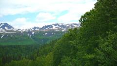 Pan Left From Green Trees to Mountains Stock Footage