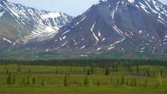 Pan Right Close Snow Capped Mountain Range with Green Field Stock Footage