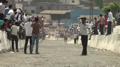 BULLOCK CART RACE IN INDIA IN VILLAGES Stock Footage