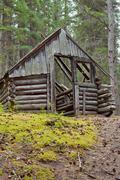 Rotting old traditional yukon taiga log cabin ruin Stock Photos