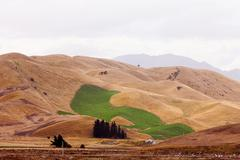 Climate change irrigated green field drought hills Stock Photos