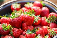 Stock Photo of red juicy fresh strawberries closeup in a basket