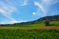 swiss landscape countryside during spring season with blue sky - stock photo