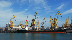 Timelapse of port cargo cranes working in port on the background of blue sky and Stock Footage