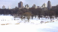 New York City: Central Park covered in snow Stock Footage