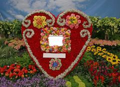 Flowers heart - stock photo