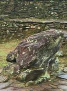 The frog stone in ciudad perdida, colombia Stock Photos