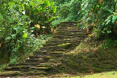 Stone stairs in ciudad perdida, colombia Stock Photos