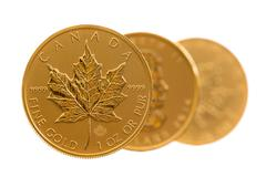 canadian gold maple leaf one ounce coins - stock photo