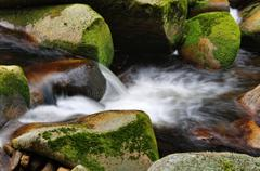 Detail of small waterfall on mossy rock. Stock Photos