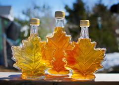 Nova Scotia maple syrup Stock Photos