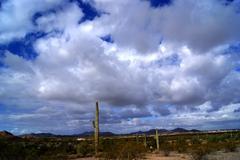 Desert land scape Kuvituskuvat
