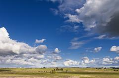 Alentejo landscape - stock photo