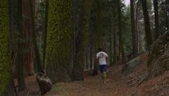 Runners In Sequoia National Park Stock Footage