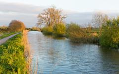Bridgwater and Taunton Canal Somerset England UK peaceful waterway - stock photo