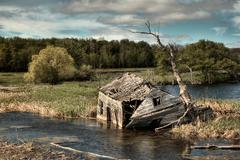 Abandoned house in swamp - Manitoba Stock Photos