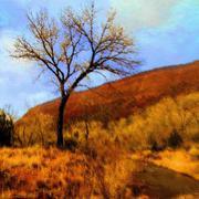 Digital Art of Nature - stock photo