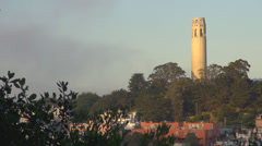 Timelapse Coit Memorial Tower park hill wind tree cloud pass sunny day suburb US Stock Footage