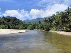 Tropical landscape. Beautiful river and sandbar. Palawan Island. Stock Photos