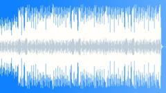 Happy Positive Texas Roadhouse Boggie Blues - stock music