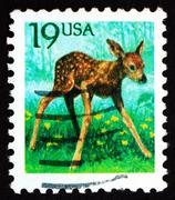 Postage stamp USA 1991 Fawn, Young Deer - stock photo