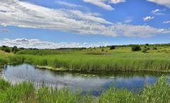 Small lake in steppe - stock photo